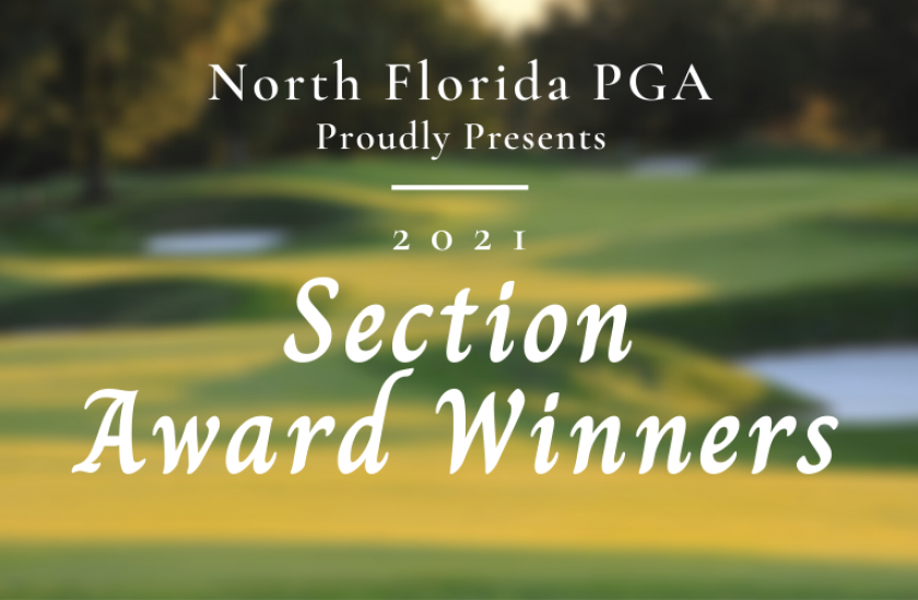 2021 Section Award Winners Announced!